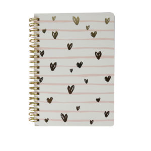 Doodle-hearts-spiral-notebook